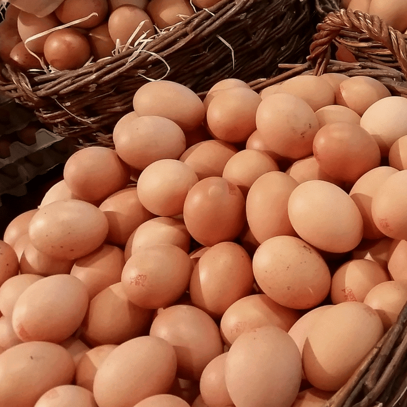 Poultry & Eggs