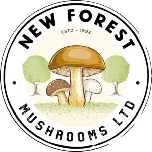 New Forest Mushrooms