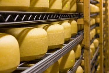 Lyburn win Gold in the International Cheese Awards