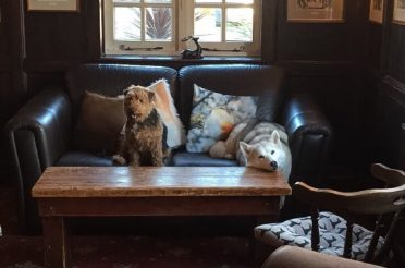 The White Hart is in the Top Ten in the Dog Friendly Pub Awards