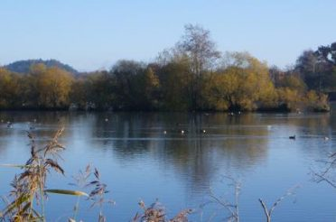 Walking Picnics Pop Up Café returns to Blashford Lakes Nature Reserve this winter