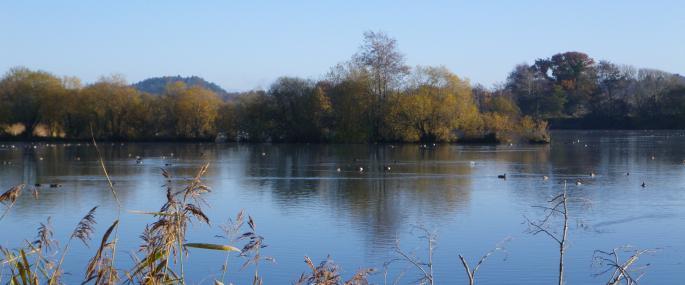 Walking Picnics Pop Up Café returns to Blashford Lakes Nature Reserve this winter
