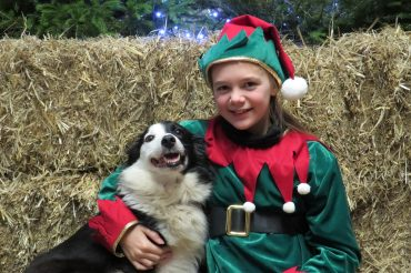 Don't miss the Longdown Farm Christmas Barn – A Festive Farmyard under one roof