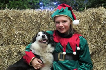 Don't miss the Longdown Farm Christmas Barn – A Festive Farmyard under one roof