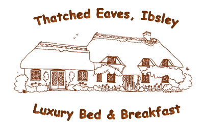 Thatched Eaves B&B and Tearoom