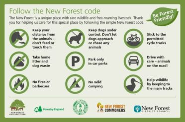 Planning to visit? Please plan ahead and respect and care for the New Forest