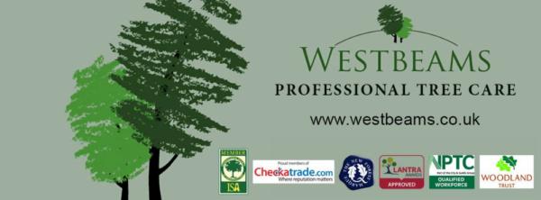 WestbeamsTreeCareFirewood