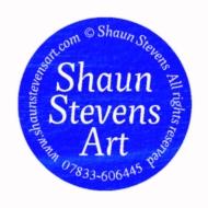 Shaun Stevens Art